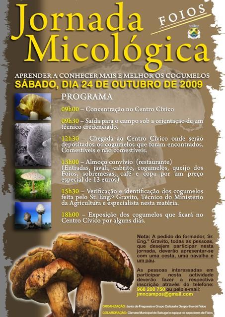 Cartaz_cogumelos09